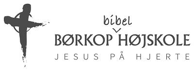 Imb logo 2016 graa til h%c3%b8jskolerne